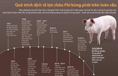 Quá trình dịch tả lợn châu Phi bùng phát trên toàn cầu