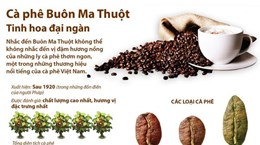 Càphê Buôn Ma Thuột - Tinh hoa đại ngàn