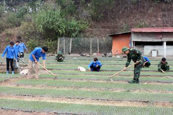Đảng bộ Nông Lâm trường 461: Chú trọng công tác kiểm tra, giám sát