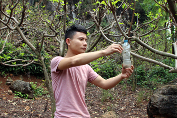 Chi Lăng: Chú trọng trồng na an toàn theo tiêu chuẩn VietGAP
