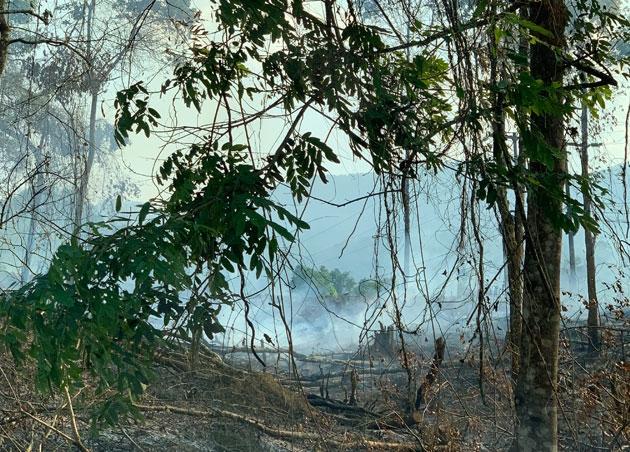 Nắng nóng, Lai Châu và Yên Bái liên tiếp cháy rừng