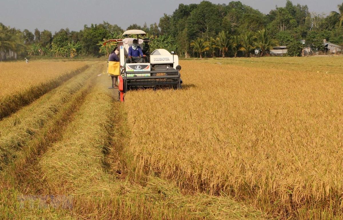 Năm 2020, nông nghiệp sẽ thiếu khoảng 3,2 triệu lao động qua đào tạo