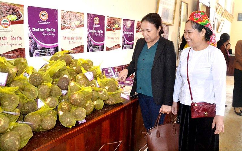 Lào Cai xây dựng thương hiệu nông sản