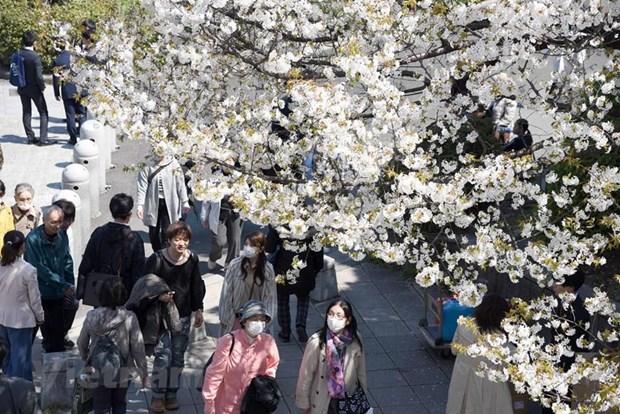 Thương vụ Việt Nam khuyến cáo không mang thực phẩm vào Nhật Bản