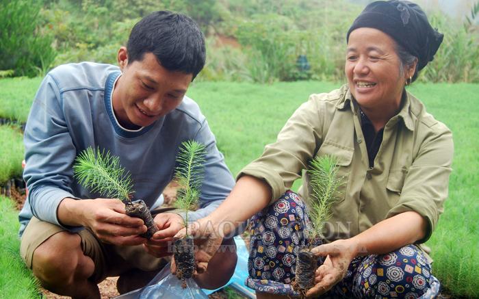 Đình Lập bứt phá từ chương trình giảm nghèo bền vững