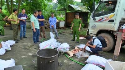 Thái Nguyên bắt giữ số lượng lớn xương và động vật quý hiếm