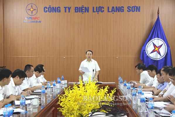 Lãnh đạo UBND tỉnh làm việc với  Công ty Điện lực Lạng Sơn