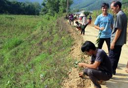 Phát huy vai trò hội viên nông dân trong xây dựng nông thôn mới