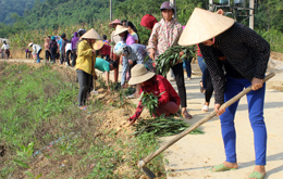 Phụ nữ chung tay xây dựng thôn xanh - sạch - đẹp