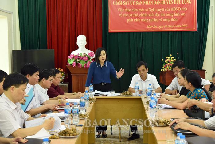 HĐND tỉnh giám sát thực hiện một số nghị quyết tại Hữu Lũng