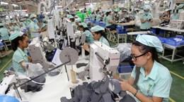 Khai thác tiềm năng hợp tác thương mại giữa Việt Nam và Uruguay