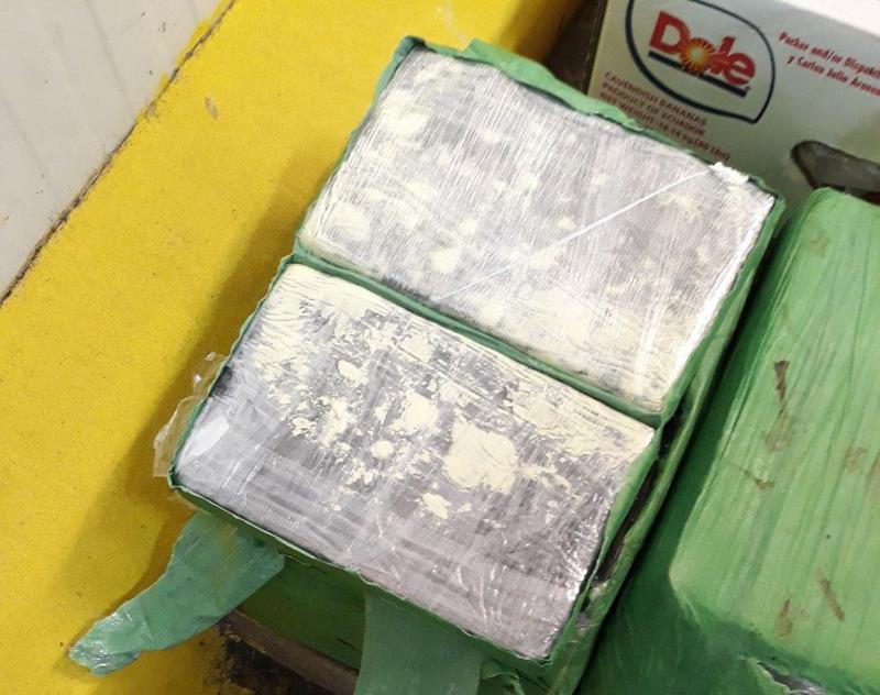 Bulgaria phát hiện cocaine giấu trong chuối nhập khẩu từ Ecuador