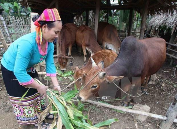 Phó Thủ tướng Vương Đình Huệ phát động nhắn tin ủng hộ người nghèo