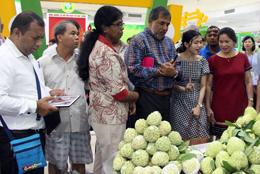 Tiêu thụ nông sản: Tăng cường xúc tiến, mở rộng thị trường