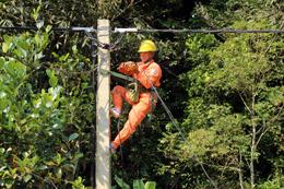 Điện lực Tràng Định: Nỗ lực thực hiện tiêu chí số 4