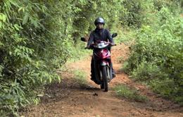 Chi bộ thôn An Mạ: Học Bác tính nêu gương