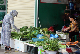 Dán tem truy xuất nguồn gốc nông sản: Nhiều hợp tác xã chưa chủ động