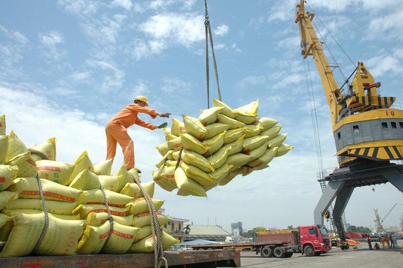 Giá xuống thấp nhất 12 năm, gạo tìm cơ hội mới
