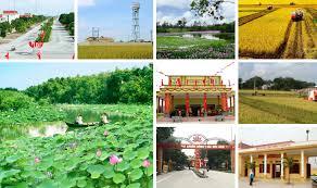 Nhiều địa phương được công nhận đạt chuẩn nông thôn mới