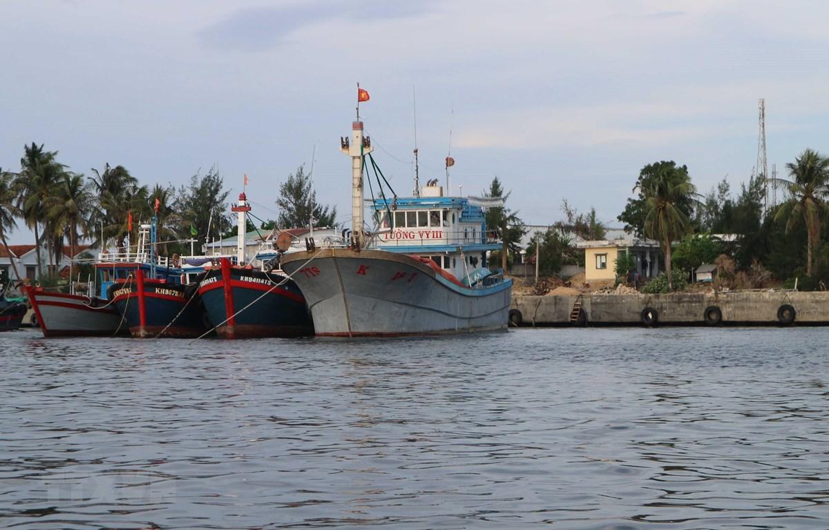 Khánh Hòa khẩn trương sơ tán 15.500 người dân đến nơi tránh trú bão