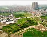 Đề xuất khẩn cấp 'cứu' di chỉ khảo cổ học Vườn Chuối (Hà Nội)