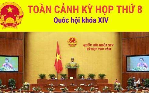 Toàn cảnh kỳ họp thứ 8, Quốc hội khóa XIV