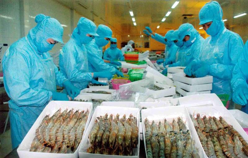 Thị trường tôm, cá tra ấm trở lại