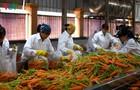 Doanh nghiệp nông sản hạn chế tác động của dịch Covid-19