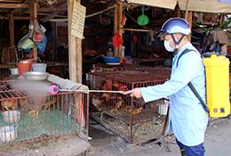 Vệ sinh, phun tiêu độc khử trùng môi trường chăn nuôi: Tích cực, hiệu quả
