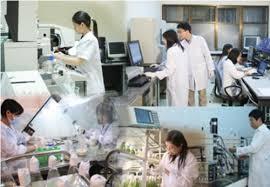 Sửa quy định thu hút, trọng dụng nhà khoa học xuất sắc