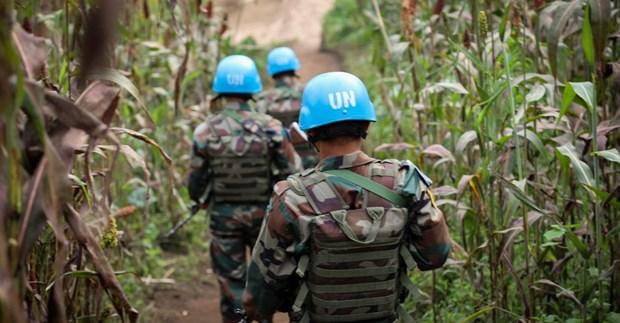 LHQ yêu cầu 9 nước ngừng điều động luân phiên lực lượng Mũ nồi xanh