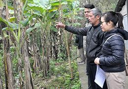 Hoàng Việt: Gỡ khó trong thực hiện tiêu chí cơ sở vật chất văn hóa