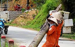Bình Gia: Đảm bảo an toàn hành lang đường bộ