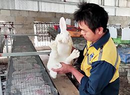 Agribank Bắc Sơn: Hiệu quả nguồn vốn cho vay phát triển sản xuất nông nghiệp