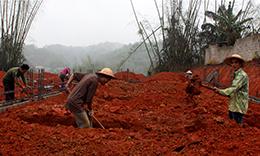 Xây dựng các công trình hạ tầng nông thôn mới: Đẩy nhanh tiến độ -  Nâng cao chất lượng