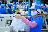 Hơn 30 triệu khẩu trang vải kháng khuẩn đáp ứng thị trường ngay đầu tháng 4