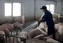 Gỡ khó cho các hợp tác xã nông nghiệp