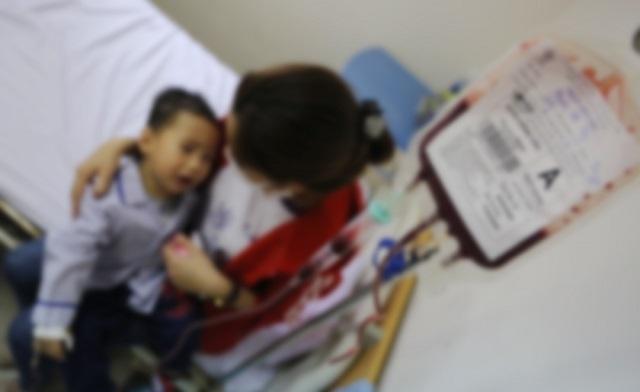 Cần sớm triển khai chương trình Tan máu bẩm sinh Quốc gia