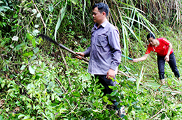 Thực hiện tiêu chí môi trường: Cách làm ở Bình Gia