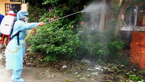 Tăng cường phòng chống dịch bệnh do vi rút Zika, sốt xuất huyết