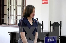 Nguyên cán bộ Thanh tra tỉnh Hòa Bình bị tuyên án 30 năm tù giam