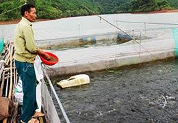 Khai thác hiệu quả mặt nước tự nhiên