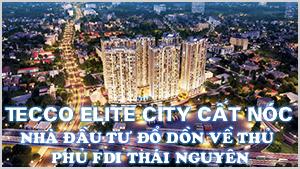 Tecco Elite City cất nóc: Nhà đầu tư đổ dồn về thủ phủ FDI Thái Nguyên