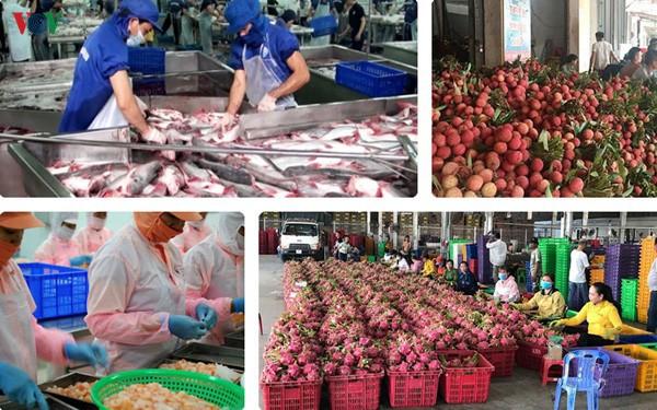 7 tháng năm 2020, Việt Nam xuất siêu 6,5 tỷ USD