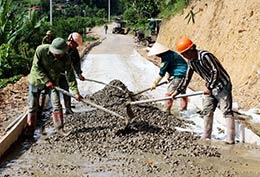 Doanh nghiệp, hợp tác xã: Chung sức xây dựng nông thôn mới
