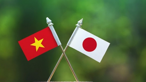Việt Nam-Nhật Bản: Thúc đẩy mạnh mẽ quan hệ Đối tác chiến lược