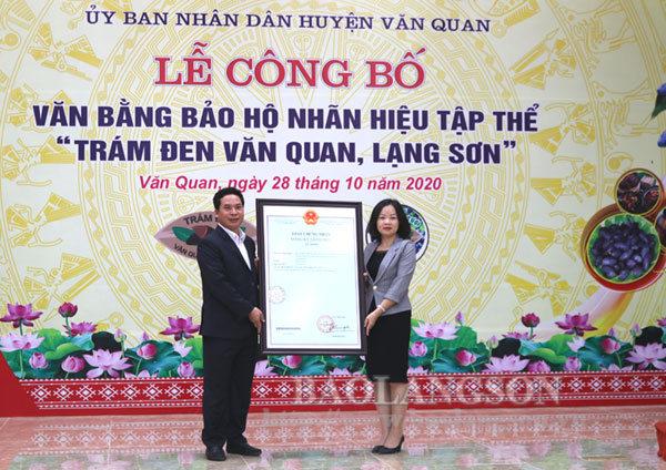 """Văn Quan đón nhận văn bằng bảo hộ nhãn hiệu tập thể """"Trám đen Văn Quan, Lạng Sơn"""""""