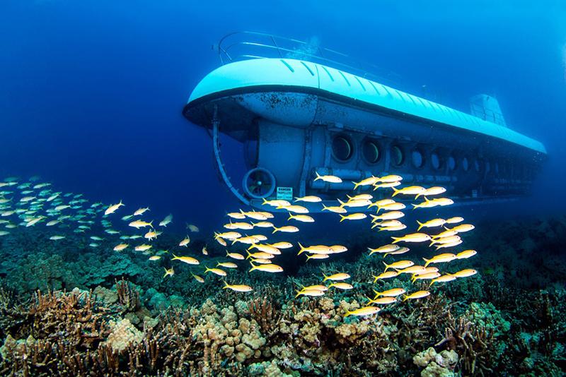 Thí điểm dịch vụ tàu lặn du lịch tại vịnh Nha Trang