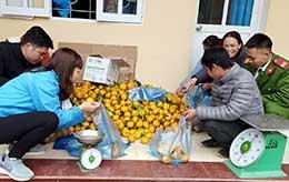 Thanh niên huyện Tràng Định: Học tập và làm theo gương Bác