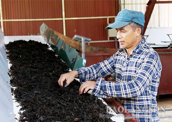 Đồng bộ giải pháp để xuất khẩu chính ngạch thạch đen sang Trung Quốc